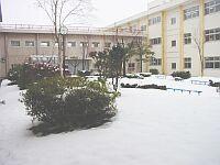 雪の積もった中庭